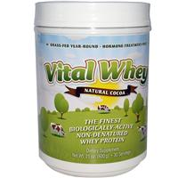 Best Chocolate Micro Filtered Whey