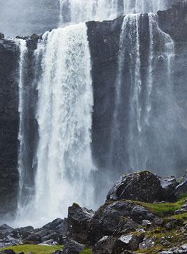 waterfall-genes