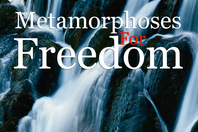 Metamorphoses For Freedom