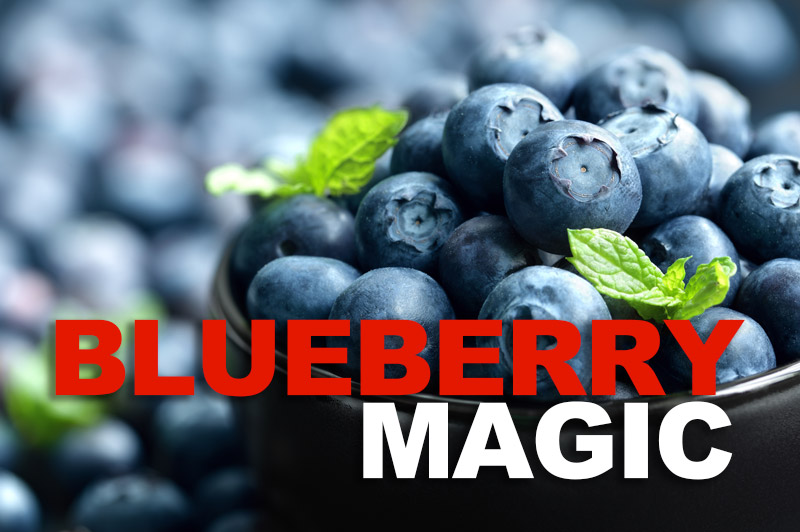 Blueberry Magic