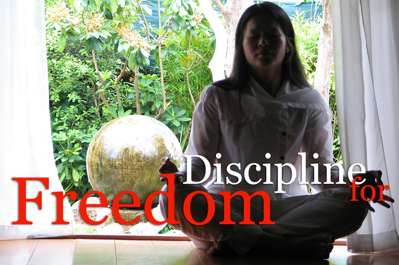 Discipline For Freedom