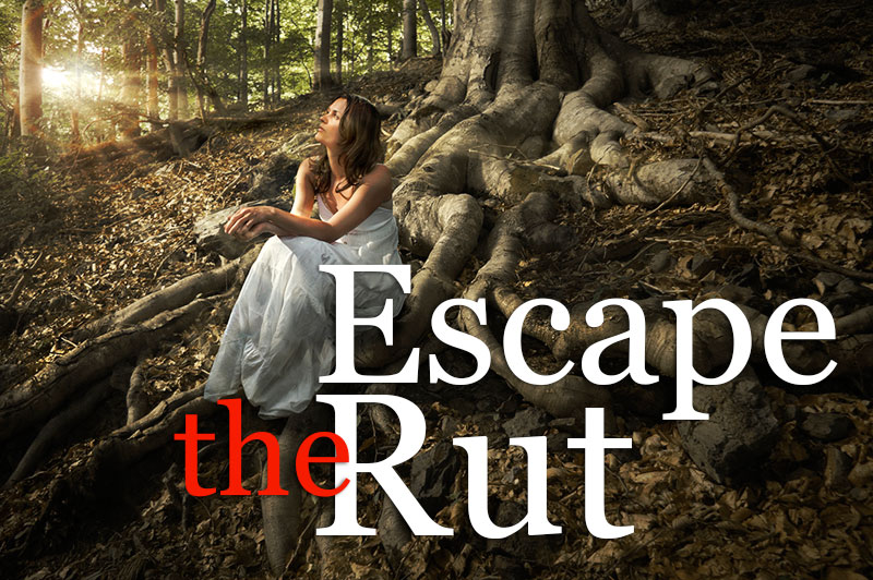 Escape The Rut