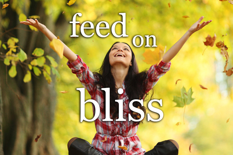 Feed On Bliss