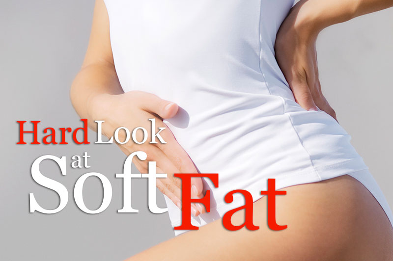 Hard Look At Soft Fat