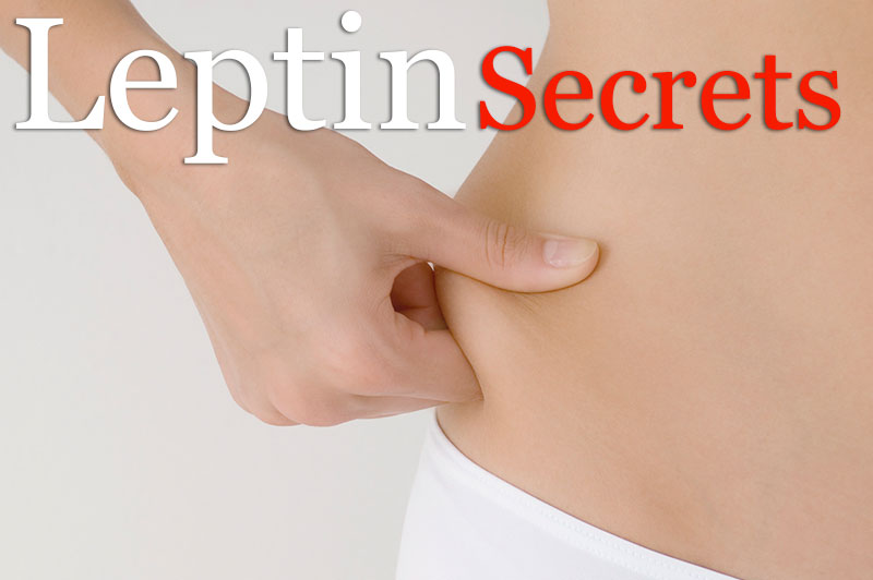 Leptin: Secret Of Permanent Weight Control