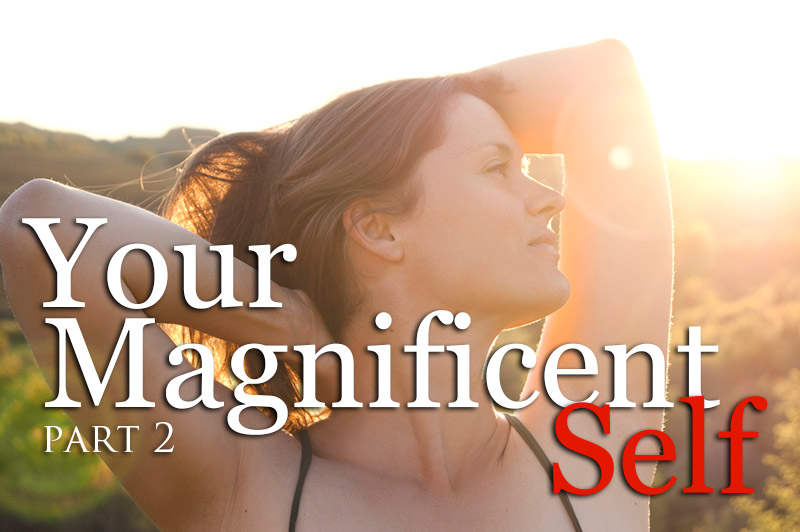Setting Free Your Magnificent Self Part 2