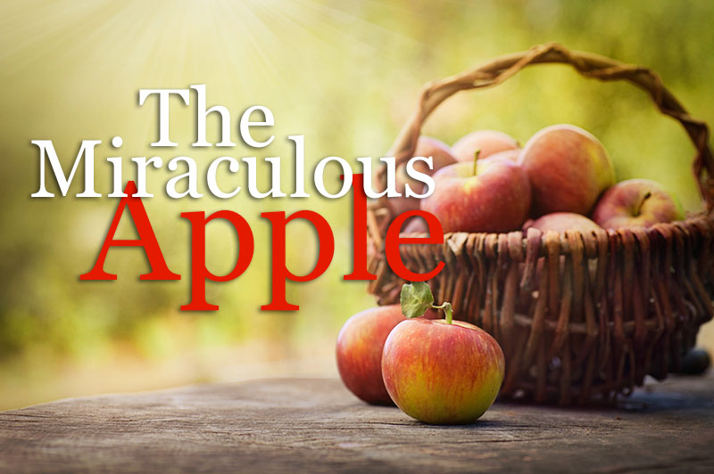 The Miraculous Apple