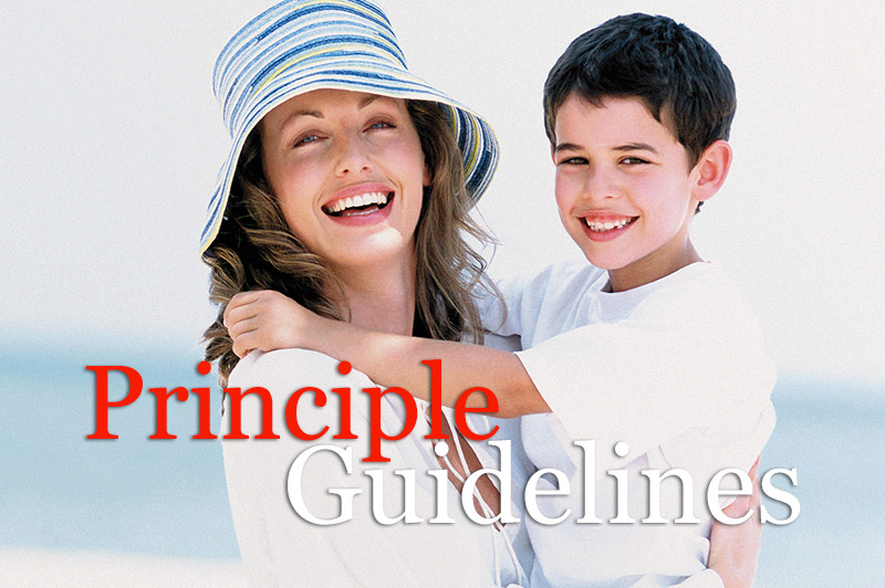 Principle Guidelines
