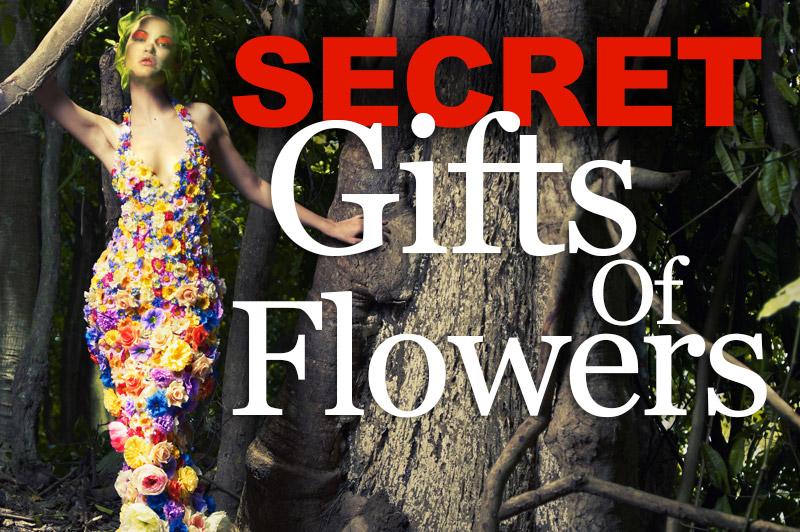 Secret Gifts Of Flowers