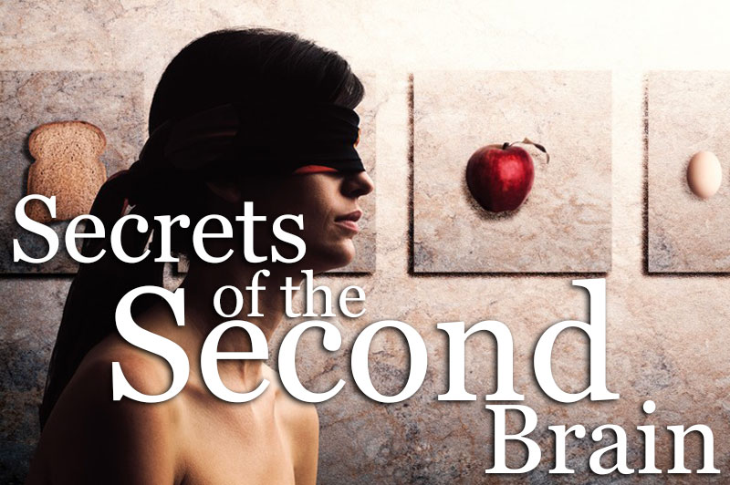 Secrets Of The Second Brain