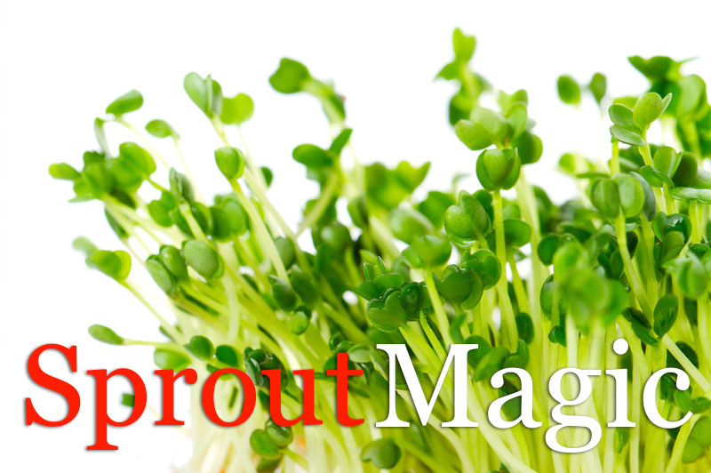 Sprout Magic