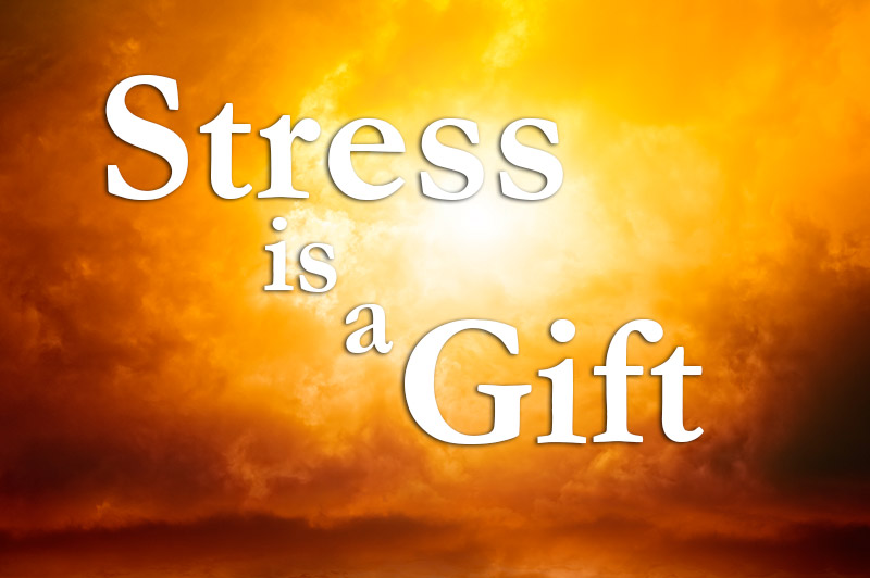 Stress Is A Gift