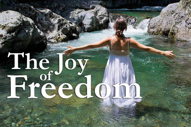 The Joy Of Freedom