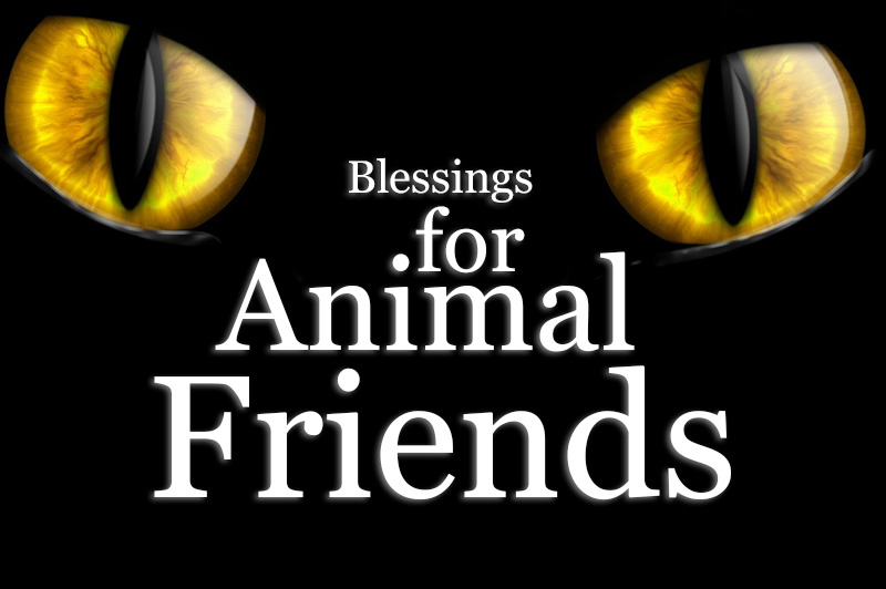 Blessings For Animal Friends