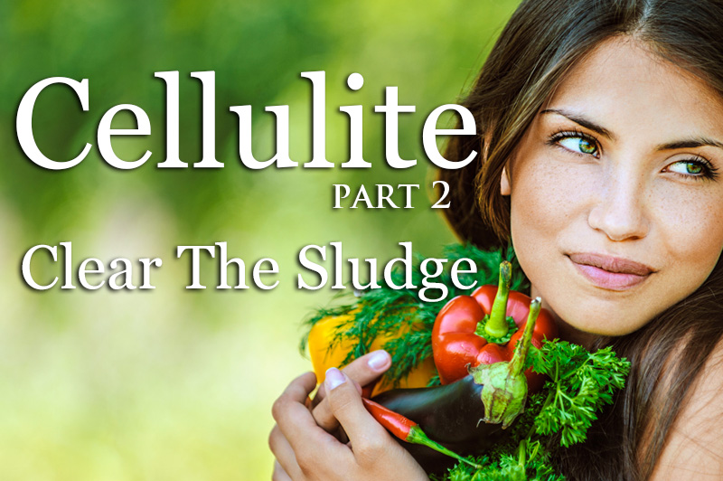 Cellulite - Clear The Sludge - Part 2