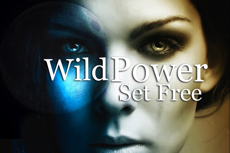 Wild Power Set Free
