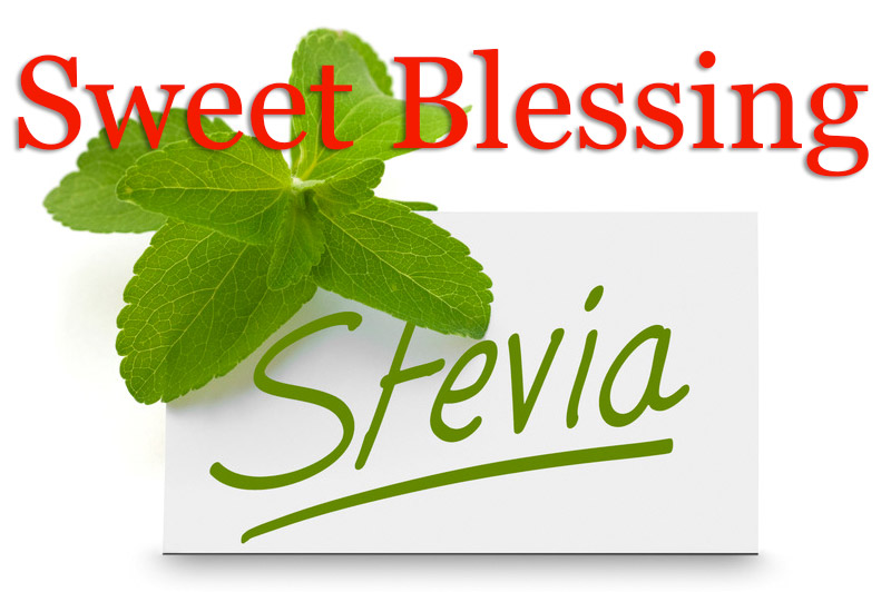 Stevia: What is it?